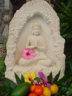 BuddhaFruit-320.jpg