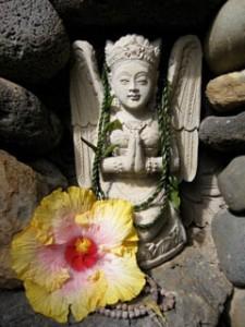 asianartmaui.com/praying hibiscus